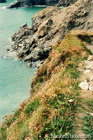 North Cornwall (UK) Coastline, Elizabeth Lieberman Earth Magic December 17th 2010