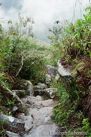 The Inca Trail to Machu Picchu, Elizabeth Lieberman Earth Magic December 17th 2010